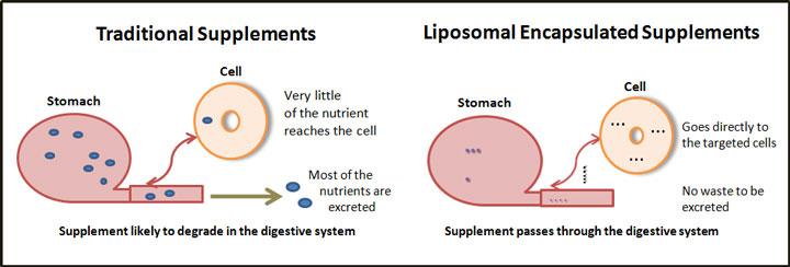 traditional-vs-liposomal