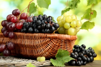 Grapeseed Oil – Glamorous and Good for Your Heart, Kidneys and Liver