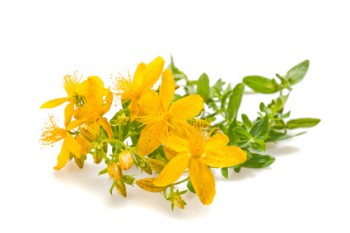 Relieve Symptoms of Depression Naturally with St. John's Wort